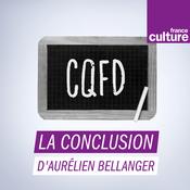 Podcast La conclusion d'Aurélien Bellanger - France Culture