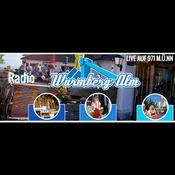 Radio RWB971