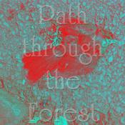 Radio path_through_the_forest