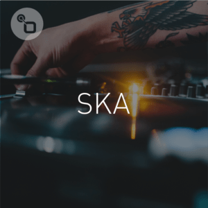Radio SKA par Banana Ska