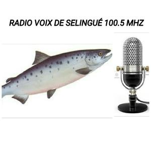 Radio RADIO VOIX SELINGUÉ FM