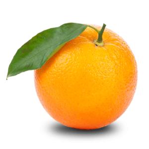 Radio Orange Radio