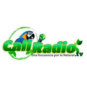 Radio Caliradio