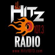 Radio Hitz 107.3 the beat