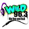 Wild 96.3 FM