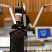 Radio radio-friedeloert