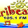Caribean 105.1 FM