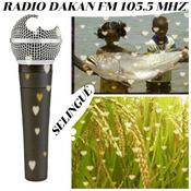 Radio RADIO DAKAN FM SELINGUÉ