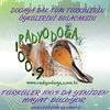 Radyo Doga