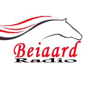 Radio Radio Beiaard