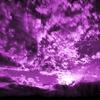 The Purple Zone